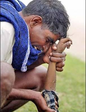 纪念因印度洋海啸而遇难的人们照片