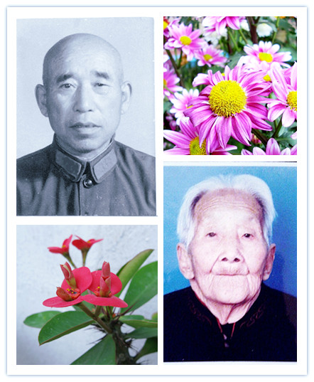 祝爷爷95岁生日快乐
