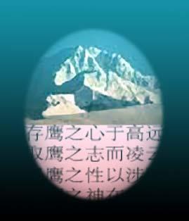 山鹰 雪峰